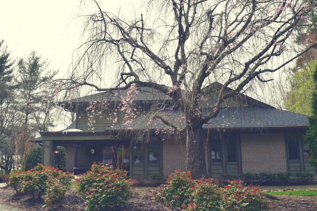 Front of Blue Ridge Orthodontics Hendersonville office